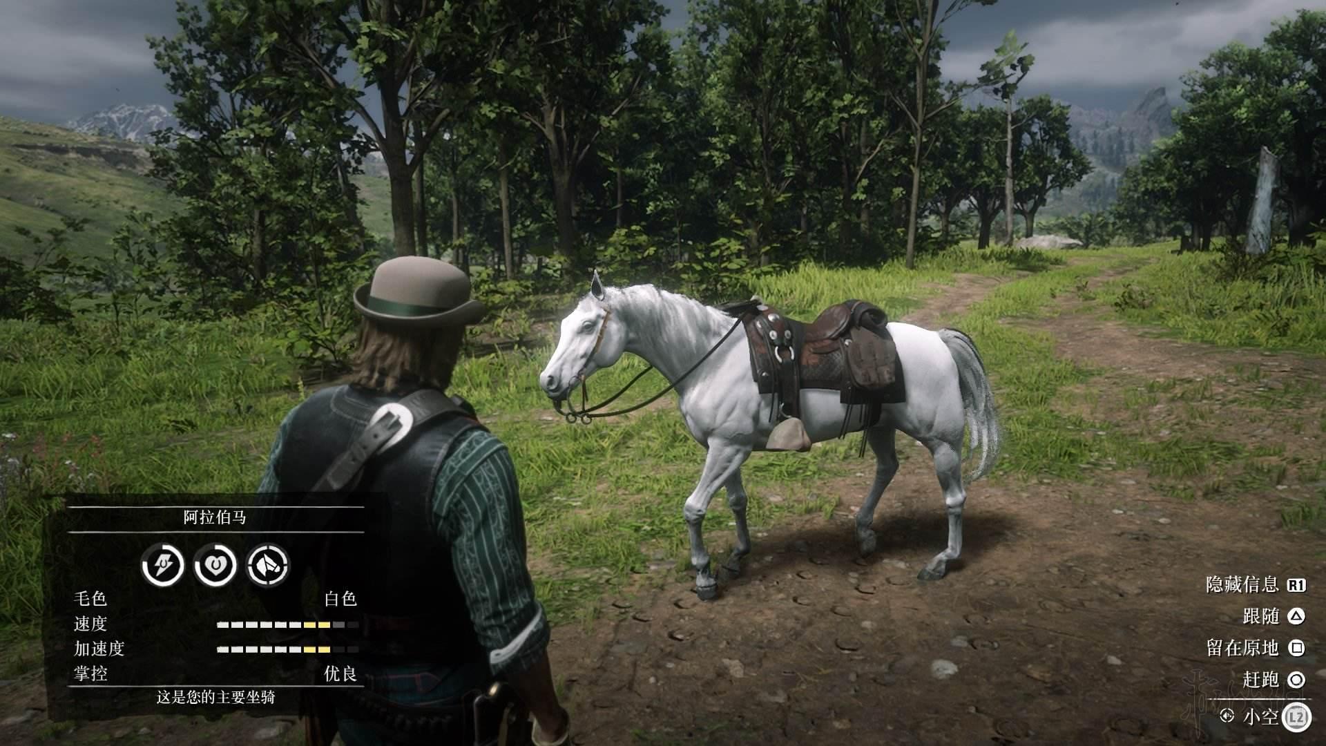 荒野大鏢客2最好的馬