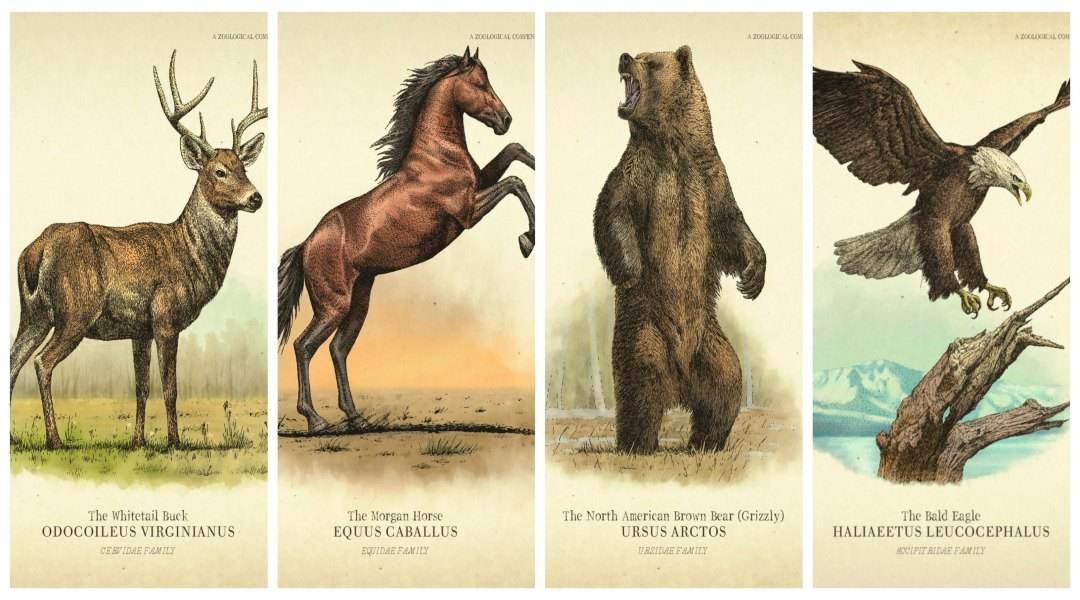 荒野大鏢客2傳說動物
