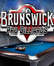 Brunswick職業臺球