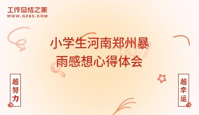 小学生河南郑州暴雨感想心得体会