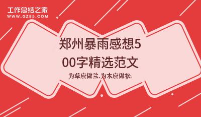 郑州暴雨感想500字精选范文